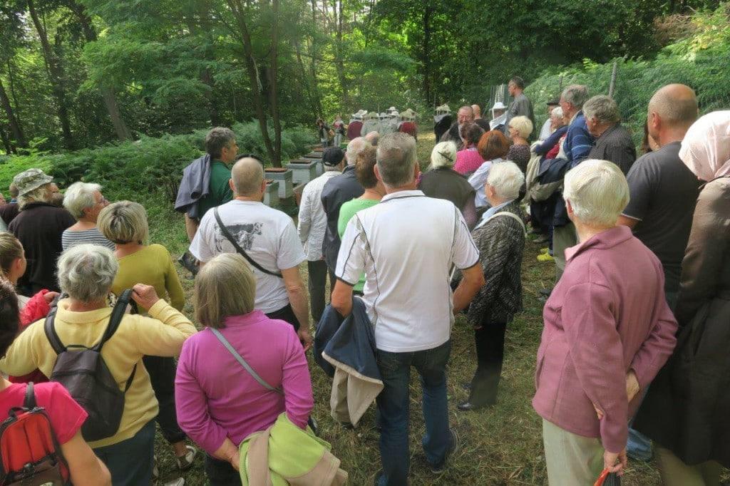 Visite du rucher avec Ismail Sozcu et Jean-Louis Perrotey