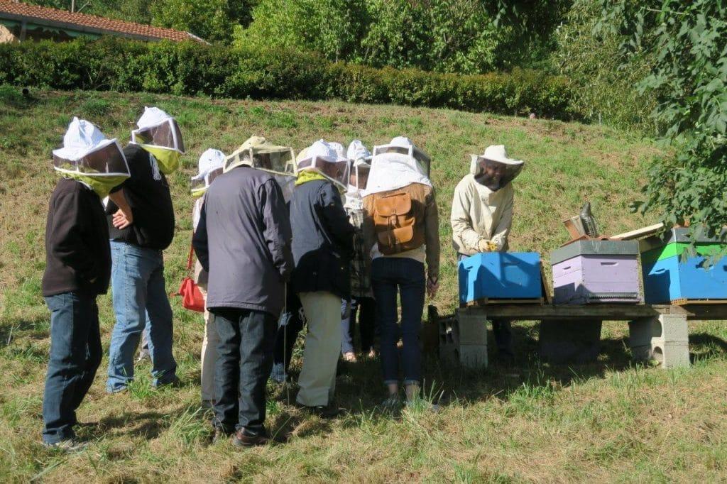 Le public autour des ruches